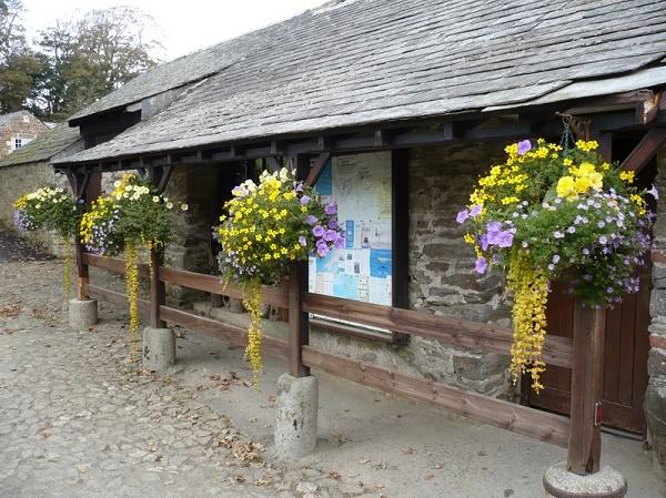 Trewan Hall Camping Site
